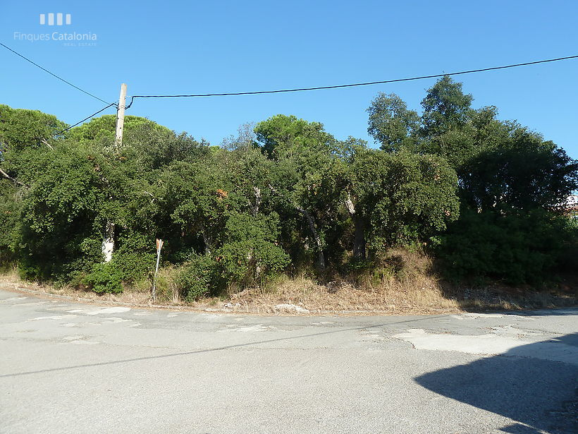 LARGE PLOT OF 1.050 M2  FOR SALE IN MAS PERE, CALONGE
